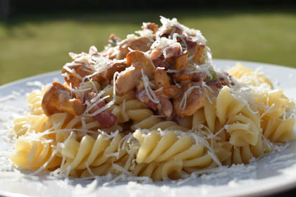 Pasta mit Pfifferlingen – Thermomixrezept